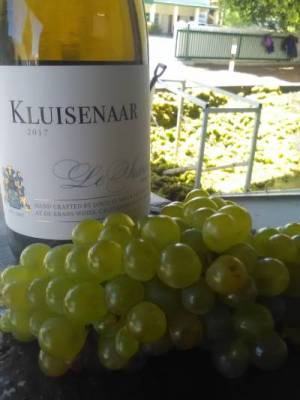 b2ap3_thumbnail_Klisenaar-with-grapes-2.jpg