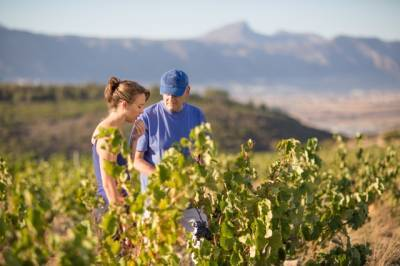 b2ap3_thumbnail_Waterkloof-Winemaker-Nadia-Barnard-with-estate-owner-Paul-Boutinot-LR.jpg